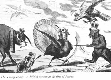 "British cartoon regarding Plevna: ""The Turkey at Bay."""